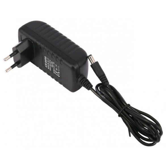 Plastic case LED power supply 36W, DC12V, 3A, IP20